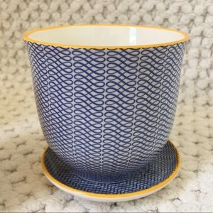 Chive Liberte Pot & Saucer in Blue Ribbon Pattern